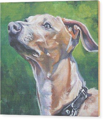 Italian Greyhound Wood Print by Lee Ann Shepard