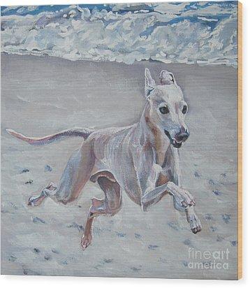 Italian Greyhound On The Beach Wood Print by Lee Ann Shepard