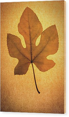 Wood Print featuring the photograph Italian Honey Fig Leaf by Frank Wilson