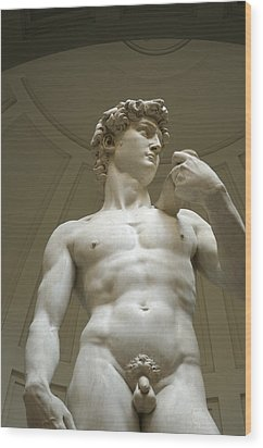 Italy, Florence, Statue Of David Wood Print by Sisse Brimberg & Cotton Coulson
