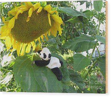 Wood Print featuring the photograph It's A Big Sunflower by Ausra Huntington nee Paulauskaite