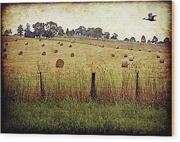 Wood Print featuring the digital art Its Baling Time by Margaret Hormann Bfa
