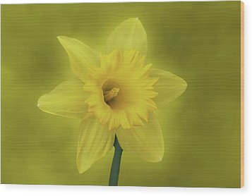It's Spring Wood Print by Sandy Keeton