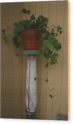 Ivy Corner Wood Print by Alan Rutherford