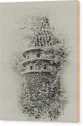 Ivy Covered Castle In The Woods Wood Print by Bill Cannon