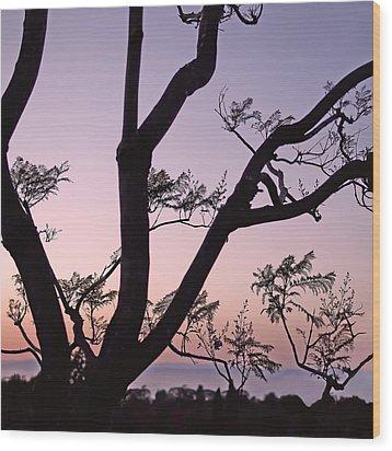 Jacaranda Silhouette Wood Print