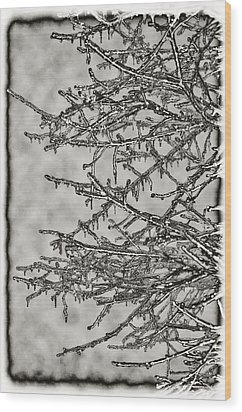 Jack Frost Wood Print by Bill Cannon