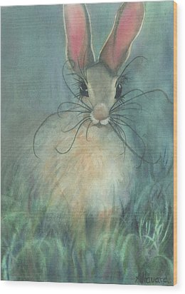 Jack-the-rabbit Wood Print by Anne Havard
