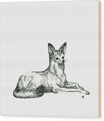 Jackal Sketch Wood Print by Shirley Heyn