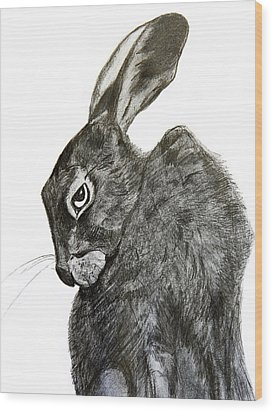 Wood Print featuring the drawing Jackrabbit Jock by Linde Townsend