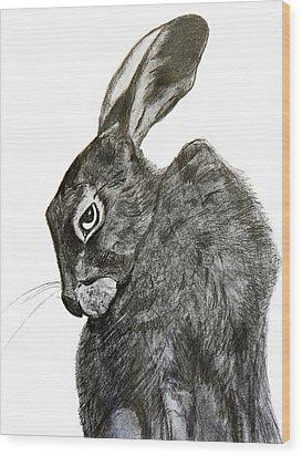Jackrabbit Jock Wood Print by Linde Townsend