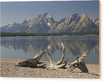 Jackson Lake 1 Wood Print by Marty Koch