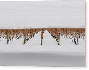 Jackson-triggs Winery Niagara Estates Wood Print by Rick Dunnuck