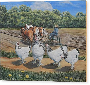 Jacobs Plowing And Light Bramah Chickens Wood Print