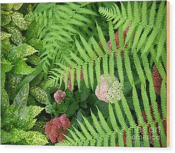 Jacqueline's Garden - Camaraderie Of Textures Wood Print by Lucyna A M Green