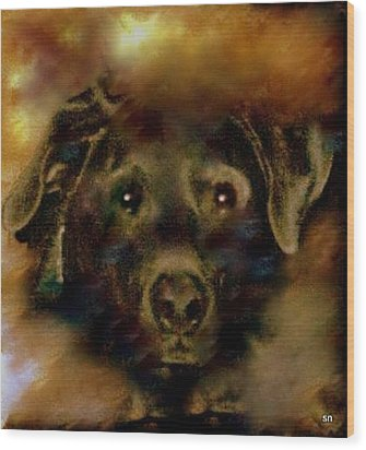 Jade-my Special Lab Wood Print by Sherri's Of Palm Springs