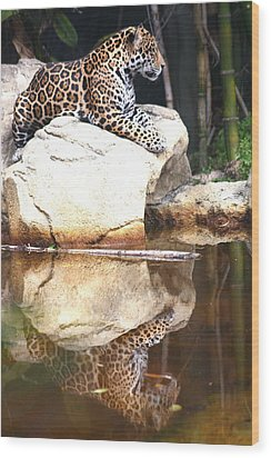Jaguar At Rest Wood Print