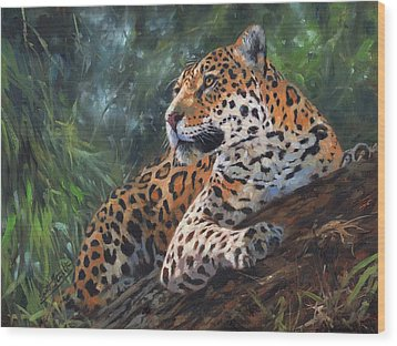 Jaguar In Tree Wood Print by David Stribbling
