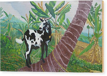 Jamaican Goat In A Tree Wood Print by D T LaVercombe