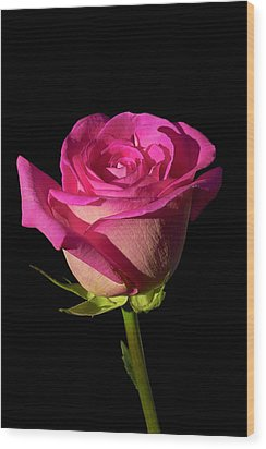 January Rose Wood Print by Gary Dean Mercer Clark