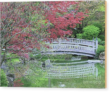 Japanese Garden Bridge In Springtime Wood Print by Carol Groenen