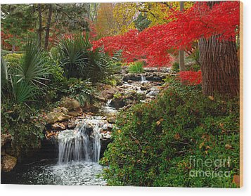 Japanese Garden Brook Wood Print by Jon Holiday
