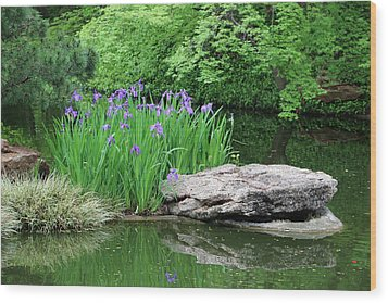 Japanese Gardens - Spring 02 Wood Print by Pamela Critchlow