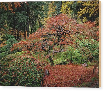 Wood Print featuring the photograph Japanese Maple At The Japanese Gardens Portland by Thom Zehrfeld