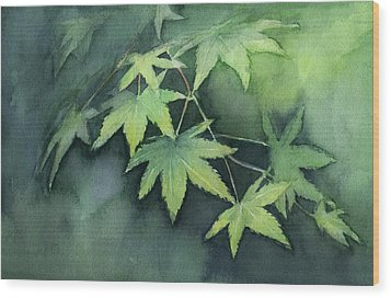 Japanese Maple  Wood Print by Olga Shvartsur