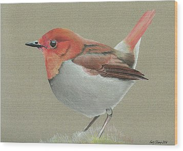 Japanese Robin Wood Print by Gary Stamp