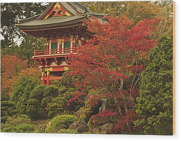 Japanese Tea Garden In Golden Gate Park Wood Print by Stuart Westmorland