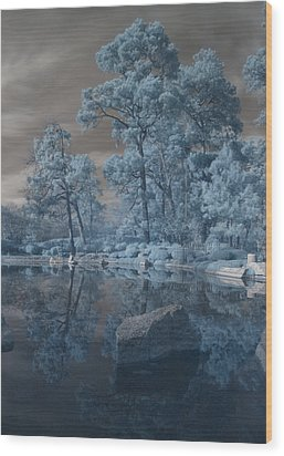 Wood Print featuring the photograph Japanese Tea Garden Infrared Center by Joshua House
