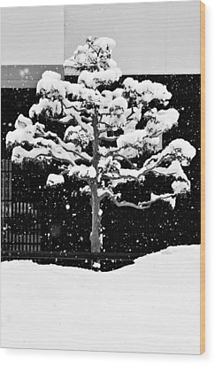 Japanese Tree In The Snow Wood Print by Dean Harte