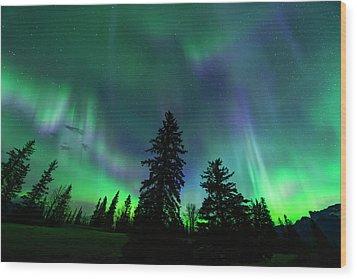 Wood Print featuring the photograph Jasper National Park Aurora by Dan Jurak