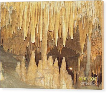 Wood Print featuring the photograph Jaws  by Robin Coaker