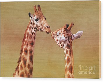 Je T'aime Giraffes Wood Print by Terri Waters