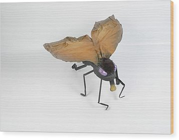 Jeanetic Violet-eyed Fly Wood Print by Michael Jude Russo