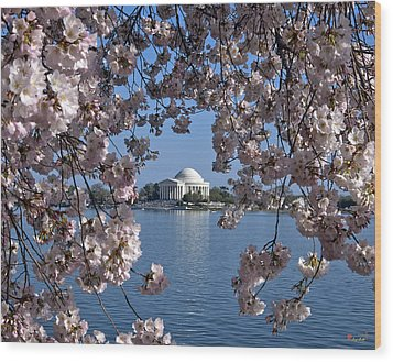 Jefferson Memorial On The Tidal Basin Ds051 Wood Print by Gerry Gantt