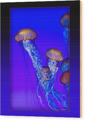 Jellyfish Floating Up Wood Print