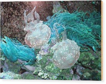 Jellyfish In Aquarium Wood Print