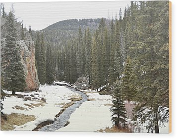 Wood Print featuring the photograph Jemez Mountains Forest Stream by Andrea Hazel Ihlefeld