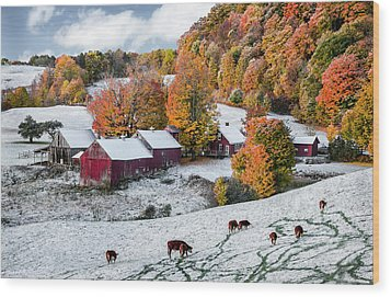 Jenne Farm, Reading, Vt Wood Print by Betty Denise