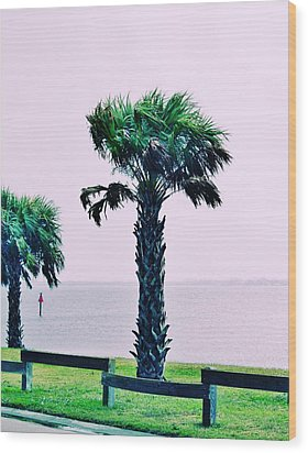 Jensen Causeway With Cross Processing Wood Print by Don Youngclaus