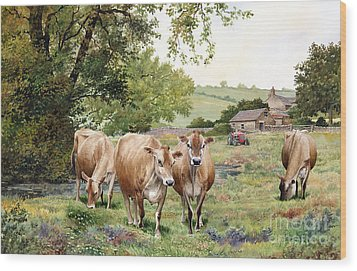 Jersey Cows Wood Print by Anthony Forster