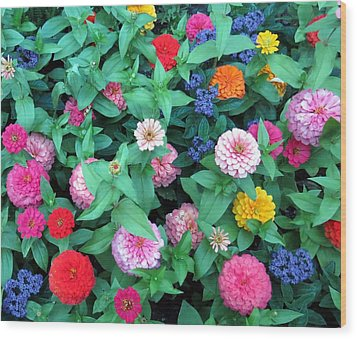 Jigsaw Puzzle? Wood Print by Betty Buller Whitehead