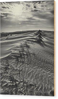 Jockey's Ridge Texture 7116 Wood Print by Dan Beauvais