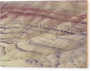 John Day Fossil Beds Wood Print by Greg Vaughn - Printscapes