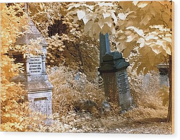 Autumnal Walk At Abney Park Cemetery Wood Print by Helga Novelli