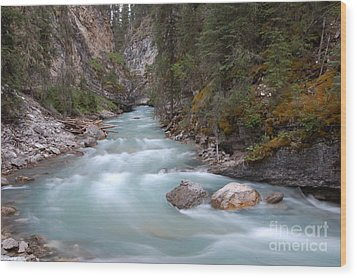 Wood Print featuring the photograph Johnston Canyon In Banff National Park by RicardMN Photography