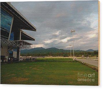 Jolly Grant Airport  Wood Print